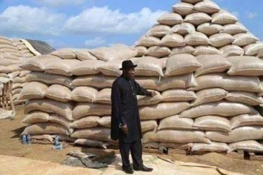 PDP Condemns APC For Distorting Facts On Jonathan's Achievement In Agric Sector